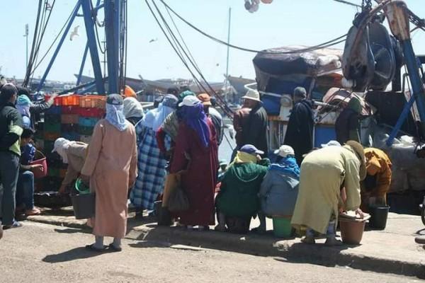 بائعات الاسماك على رصيف ميناء الصويرة وغياب الحماية الاجتماعية
