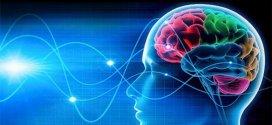 شريحة ذكية تُزرع في الدماغ وتتحكم بالمزاج عبر تطبيق على الهاتف الذكي