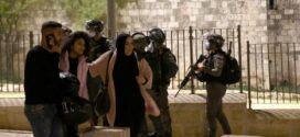 الاحتلال يشن حملة اعتقالات داخل ساحة المسجد الأقصى
